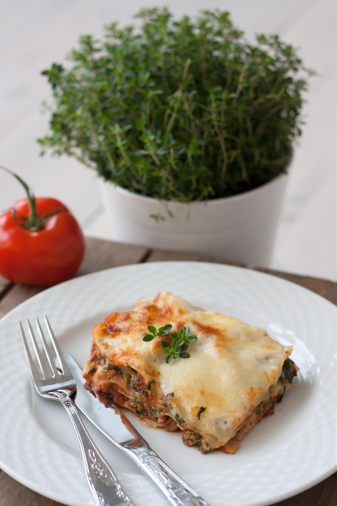 Recipe for Chicken Lasagna with Spinach, Cottage Cheese and Bechamel Sauce