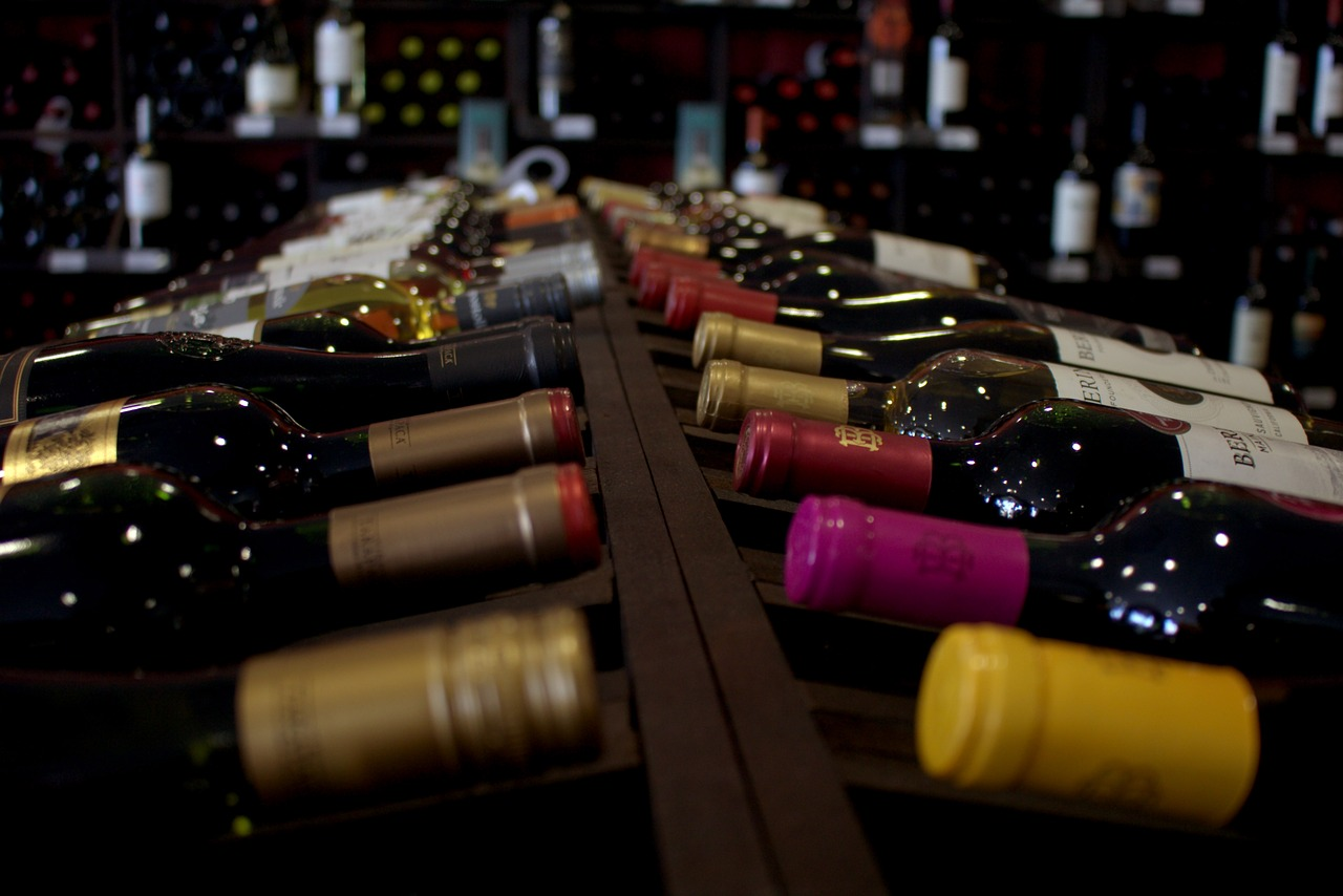 Best Spanish Wines and Food Pairing Guide